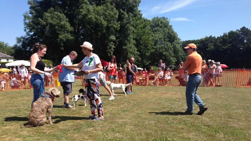 Clive judging at Port Lympne dog show